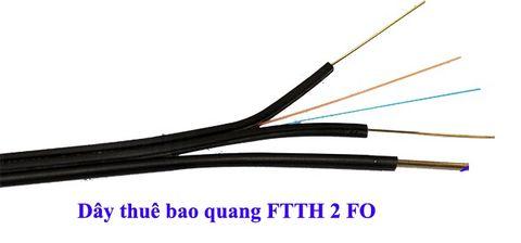 Cáp quang thuê bao 2FO FTTH ống đệm lỏng