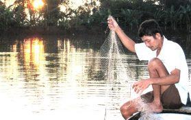 Sau lũ, tính chuyện giữ nước cho ĐBSCL