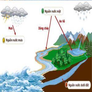 Tìm hiều về các thành phần thường thấy trong nước | Ứng dụng của hệ thống khử ion nước